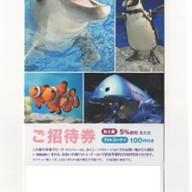 新江の島水族館のチケット